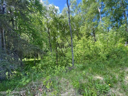 Photo of L19B Telequana Drive, Anchorage, AK 99517 (MLS # 21-3827)