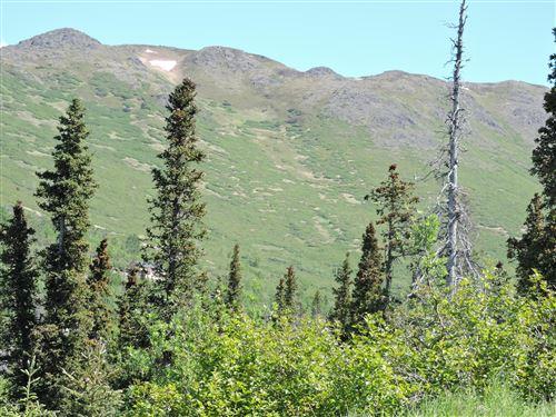 Photo of 16741 Byron Drive, Anchorage, AK 99516 (MLS # 20-7829)