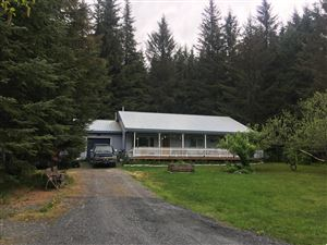 Photo of 13188 Bruno Road, Seward, AK 99664 (MLS # 19-8940)