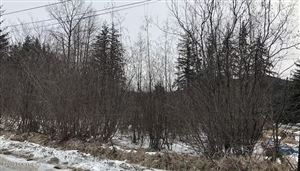 Photo of L25-30 B1 Vermier Street, Haines, AK 99827 (MLS # 19-3987)