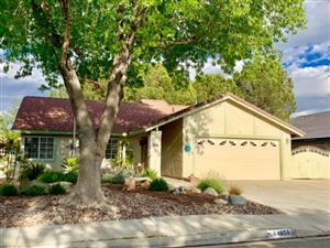Photo of 44050 Shad Street, Lancaster, CA 93536 (MLS # 19004383)