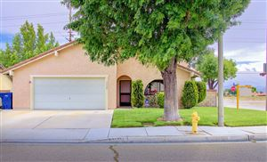 Photo of 3556 Spice Street, Lancaster, CA 93536 (MLS # 19005761)