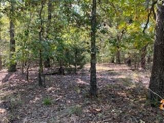 Photo of 13625 White Oak Lane, Fayetteville, AR 72704 (MLS # 1161103)