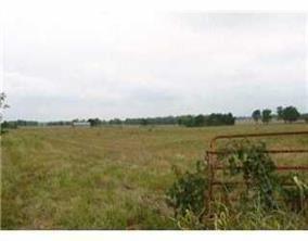 Photo of 10387 Phillips Cemetery Road #Tract E, Bentonville, AR 72712 (MLS # 1161374)