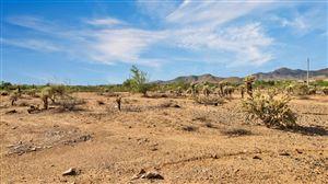 Photo of 12514 E Cochise Drive, Scottsdale, AZ 85259 (MLS # 5822034)