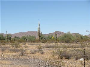 Photo of 28413 N 163RD Avenue, Surprise, AZ 85387 (MLS # 5972067)