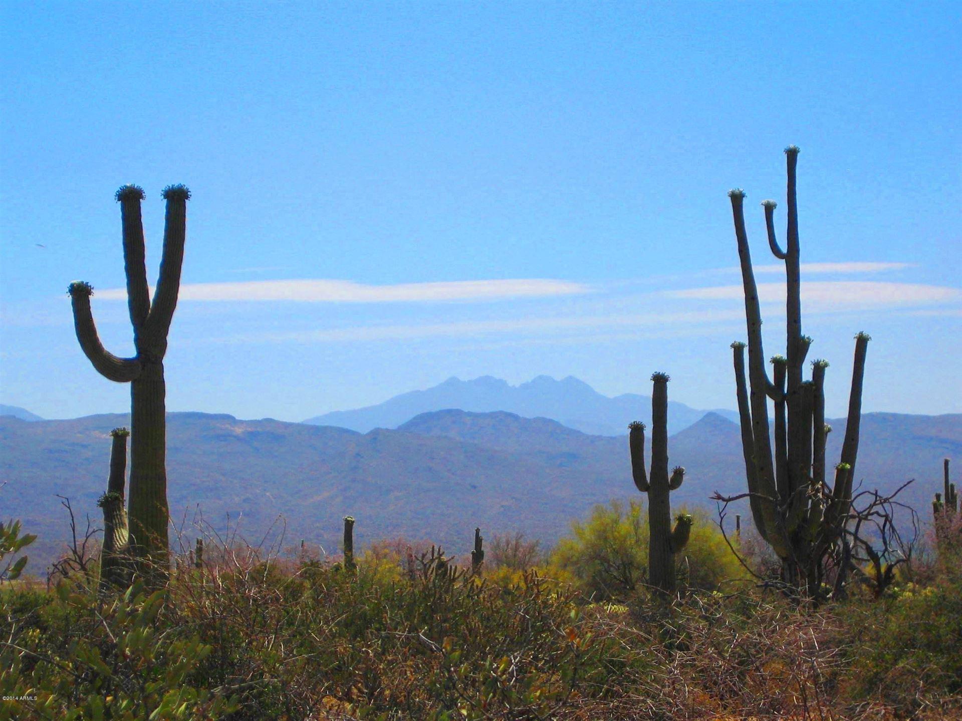 Photo of 31300 N 173rd Place, Rio Verde, AZ 85263 (MLS # 6219180)