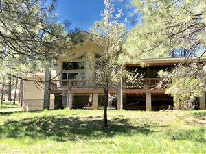 Photo of 3529 Larson Loop, Forest Lakes, AZ 85931 (MLS # 5923226)