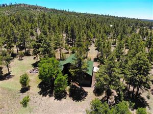 Photo of 719 OLD STANDARD MILL Road, Pinedale, AZ 85934 (MLS # 5917337)