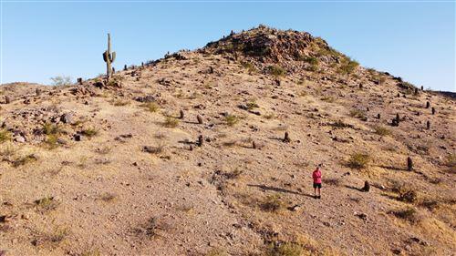 Photo of 2473 E GLENHAVEN Drive, Phoenix, AZ 85048 (MLS # 6079476)