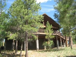 Photo of 2895 CHOCTAW Ridge, Happy Jack, AZ 86024 (MLS # 5962499)
