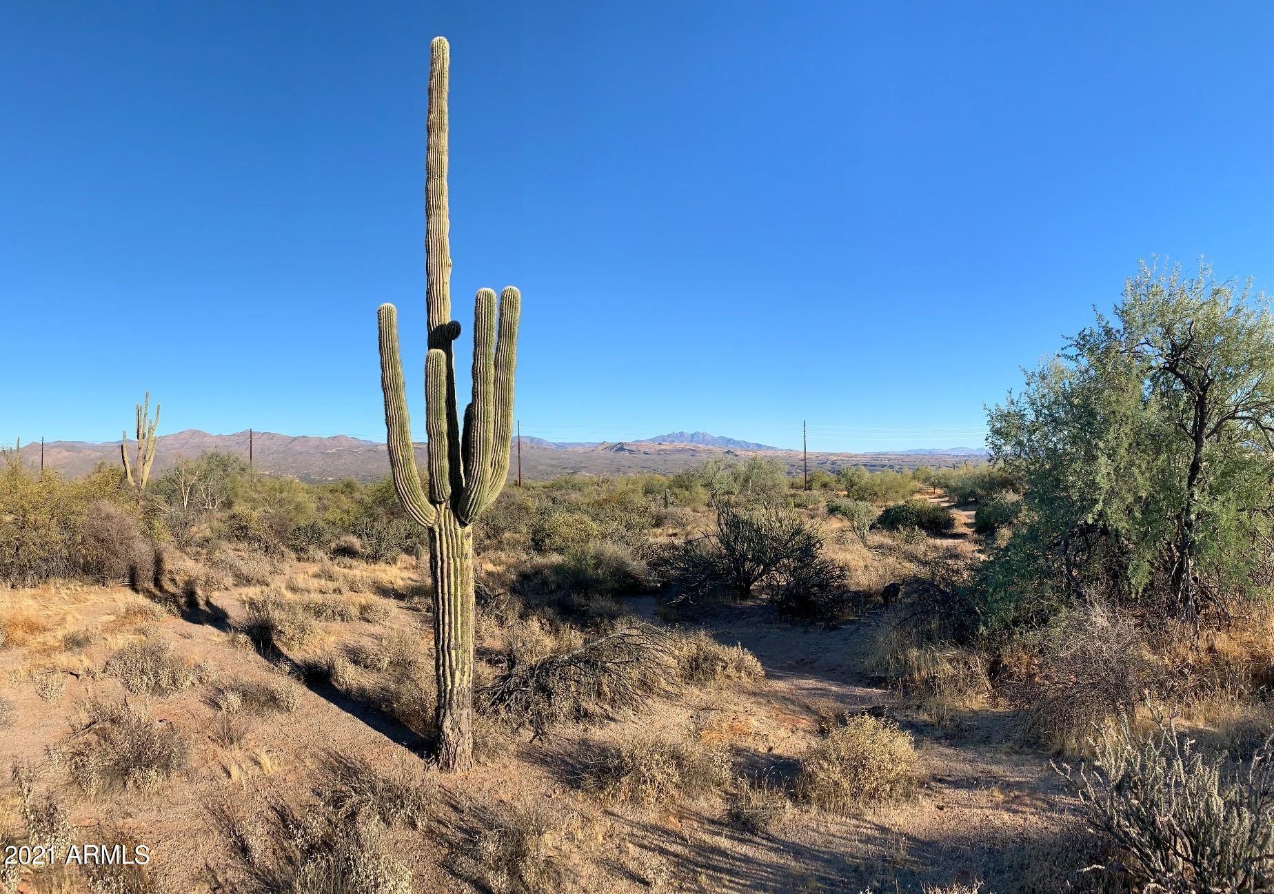 Photo of 17521 E WHITETHORN Drive, Rio Verde, AZ 85263 (MLS # 6259512)