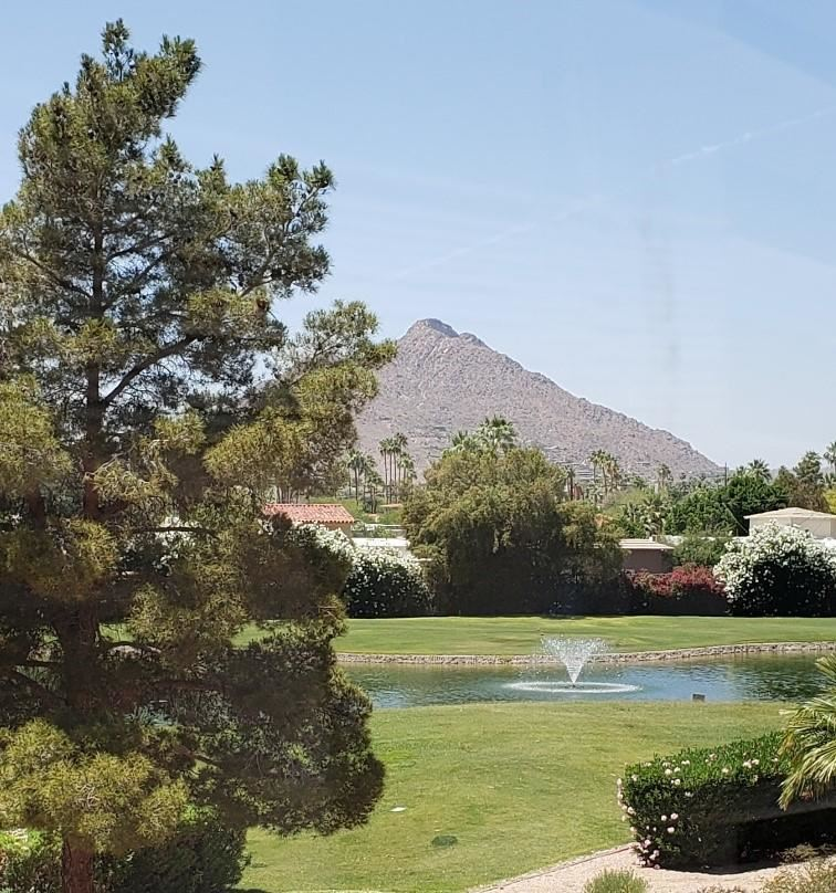 Photo of 7860 E CAMELBACK Road #311, Scottsdale, AZ 85251 (MLS # 6232531)