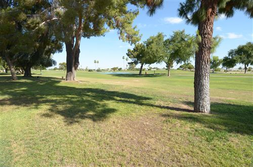 Photo of 10419 W PINEAIRE Drive, Sun City, AZ 85351 (MLS # 6118548)