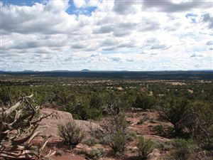 Photo of 9554 BLUE BELL Lane, White Mountain Lake, AZ 85912 (MLS # 5460606)