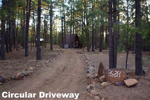 Photo of 2628 Vacation Drive, Forest Lakes, AZ 85931 (MLS # 5945666)