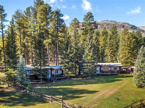 Photo of 25329 Hwy 191 --, Alpine, AZ 85920 (MLS # 5940693)