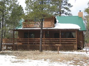 Photo of 2154 SADDLE BLANKET Road, Happy Jack, AZ 86024 (MLS # 5896725)
