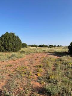 Photo of 5530 GLASGLOW Drive, Snowflake, AZ 85937 (MLS # 6291786)