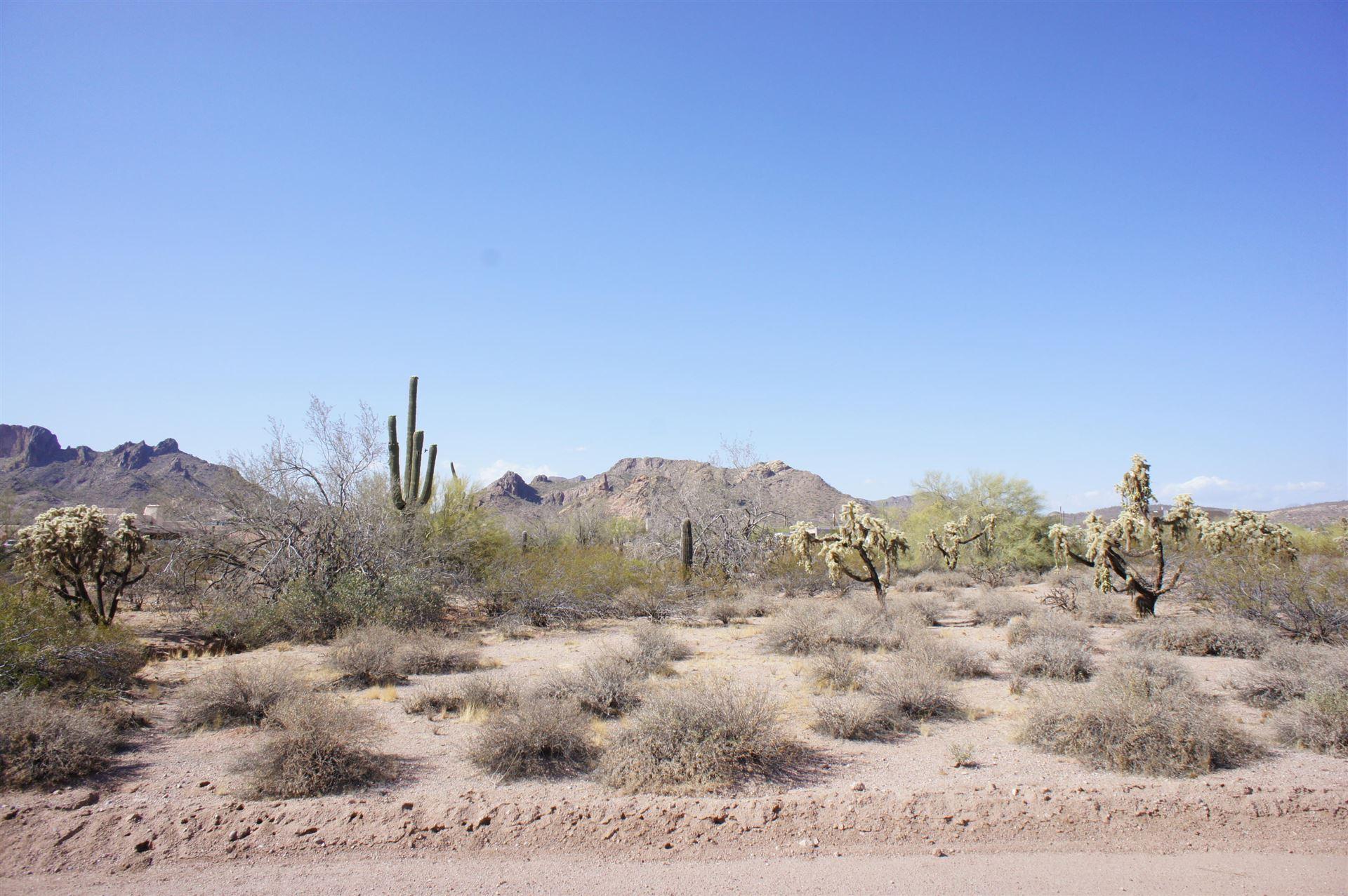 Photo of 0 E Whiteley Street, Apache Junction, AZ 85119 (MLS # 6230795)
