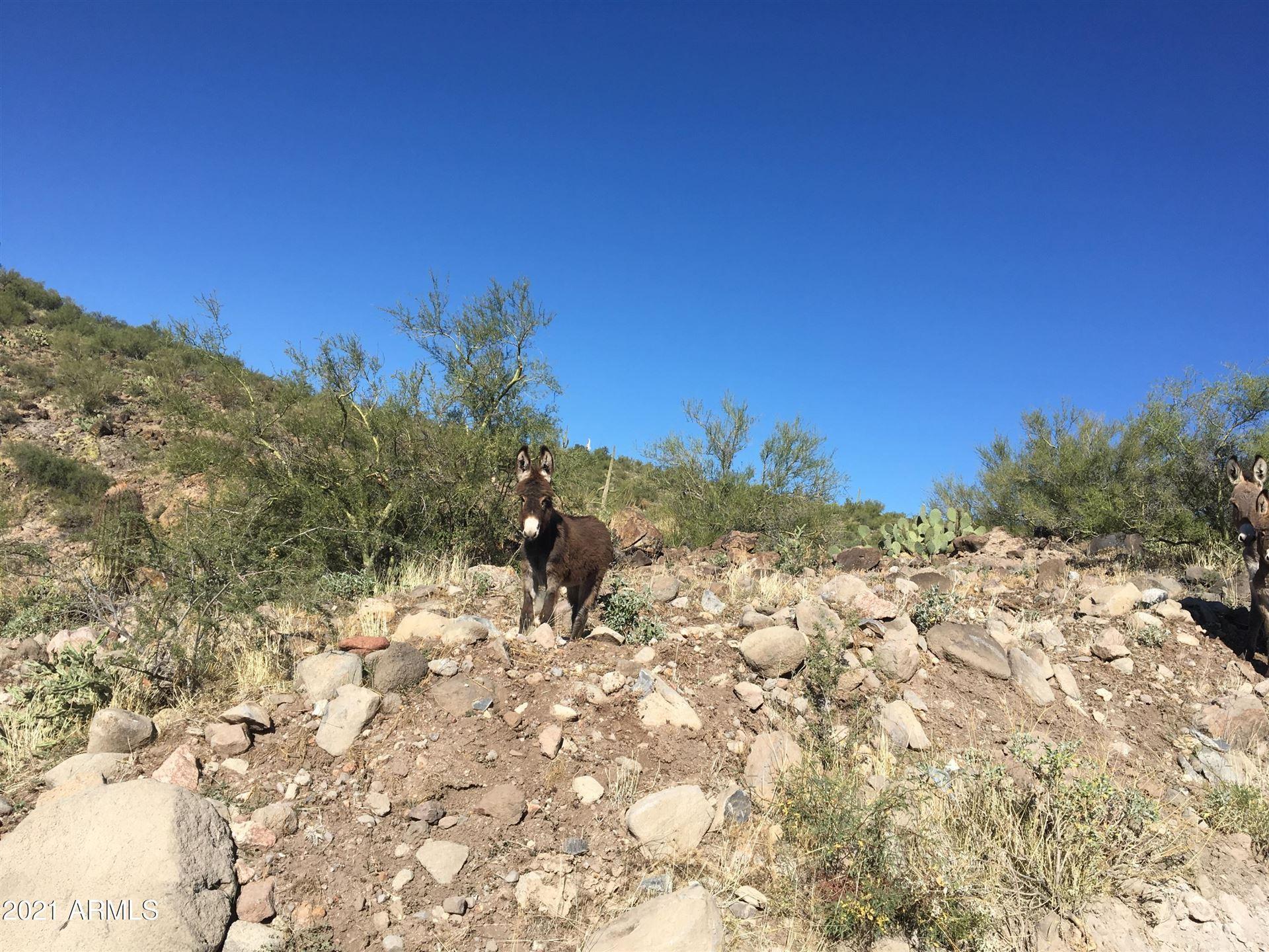 Photo of 000xx N Lake Pleasant Road, Morristown, AZ 85342 (MLS # 6241808)
