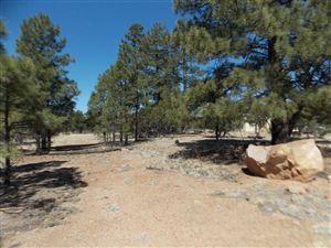 Photo of 1450 LOW MOUNTAIN Trail, Heber, AZ 85928 (MLS # 5754817)