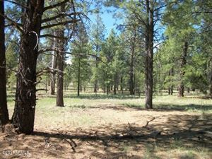 Photo of Pcl3T Coconino Forest Rd 867 --, Flagstaff, AZ 86001 (MLS # 5780839)