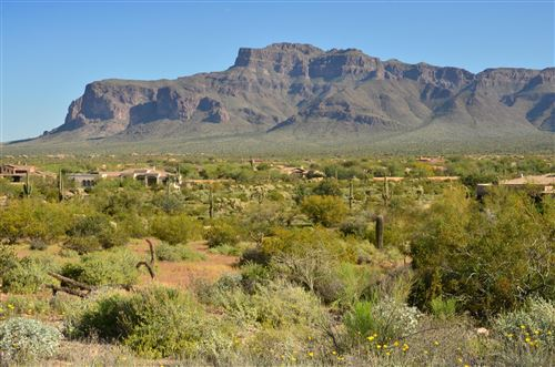 Photo of 6616 E OLD CAMP Road, Gold Canyon, AZ 85118 (MLS # 6019954)