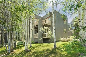 Photo of 310 Meadow Ranch, Snowmass Village, CO 81615 (MLS # 158530)
