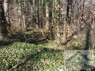 Photo of 0 Plum Nelly Road, Athens, GA 30606 (MLS # 983243)