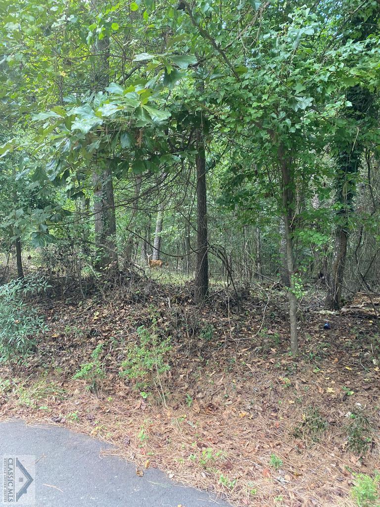 Photo of Lot 14 Live Oak Circle, Athens, GA 30606 (MLS # 978359)