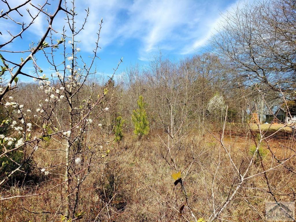 Photo of 6453 Jefferson River Road, Athens, GA 30607 (MLS # 977519)