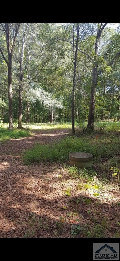 Photo of 212 Hickory Hills Road, Danielsville, GA 30633 (MLS # 977566)