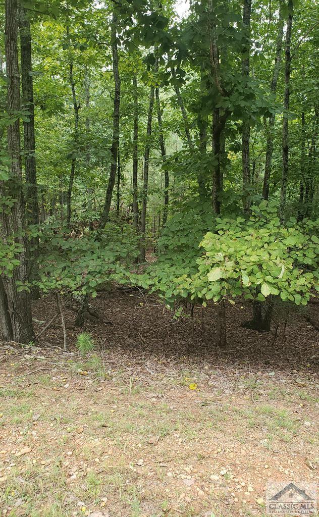 Photo of 560 Mark Trail #29, Monroe, GA 30655 (MLS # 977690)