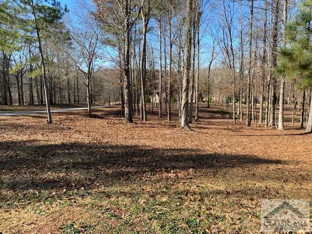 Photo of 1254 Mulberry Chase, Commerce, GA 30530 (MLS # 978896)
