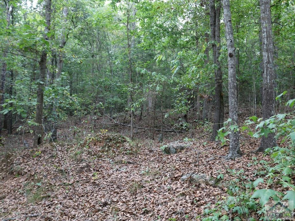 Photo of 12.52 Cedar Lane, Danielsville, GA 30633 (MLS # 977952)
