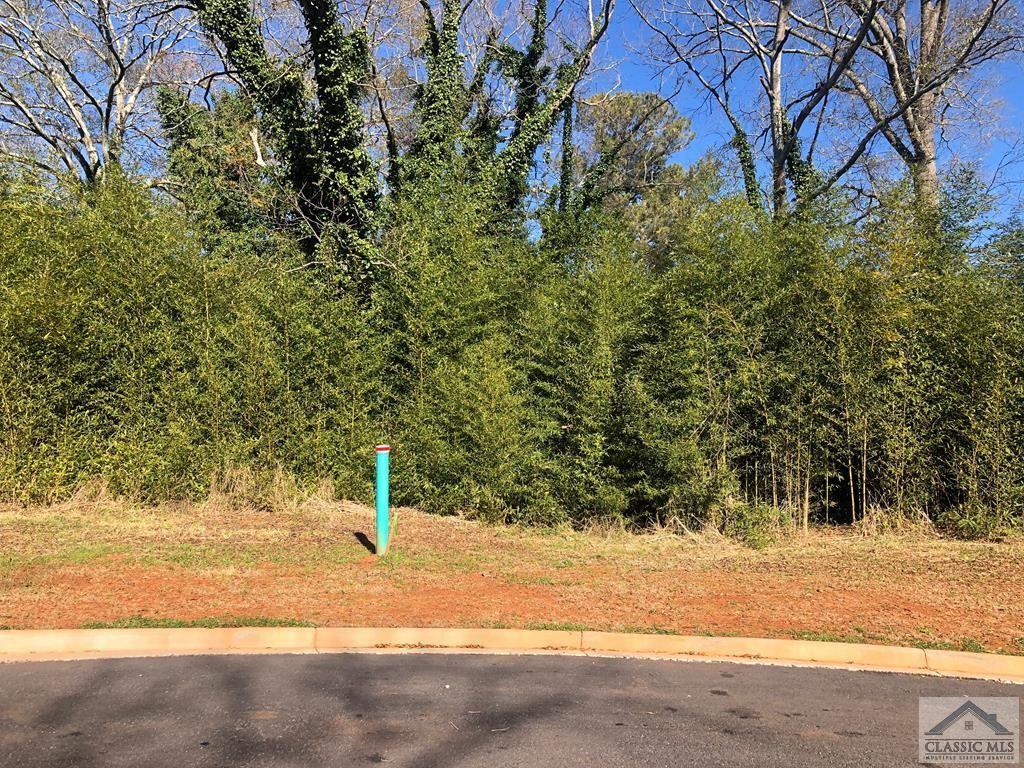 Photo of 690 Foster Park Lane, Madison, GA 30650 (MLS # 978967)