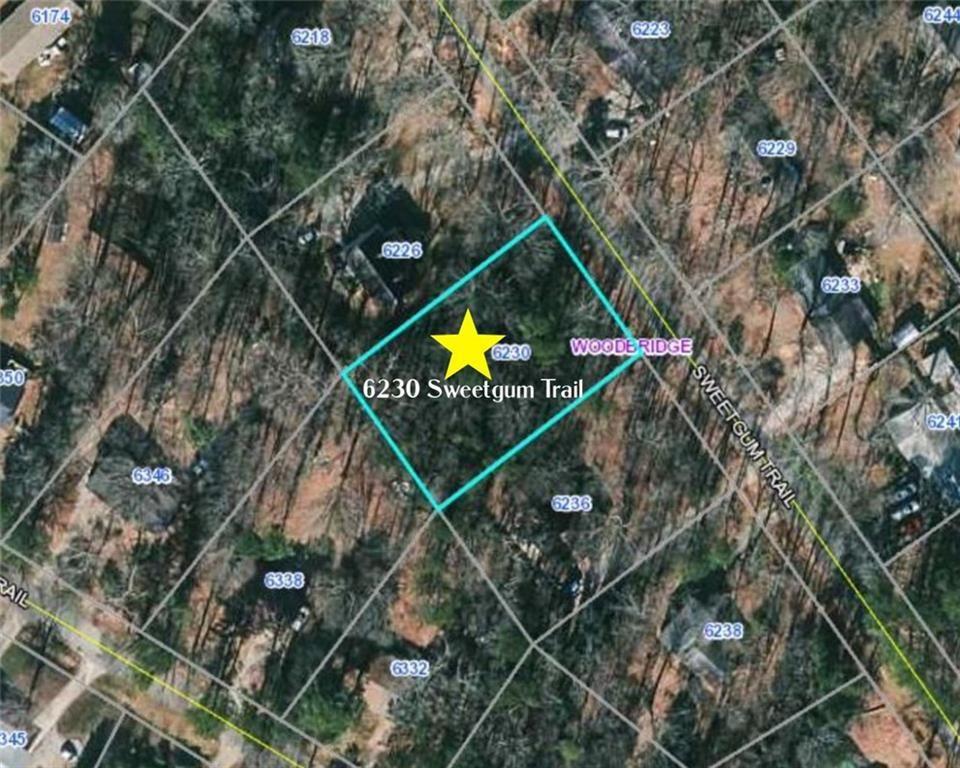Photo of 6230 SWEETGUM Trail, Flowery Branch, GA 30542 (MLS # 6866034)