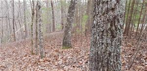 Photo of 3290 Wood Poppy View, Big Canoe, GA 30143 (MLS # 6123068)