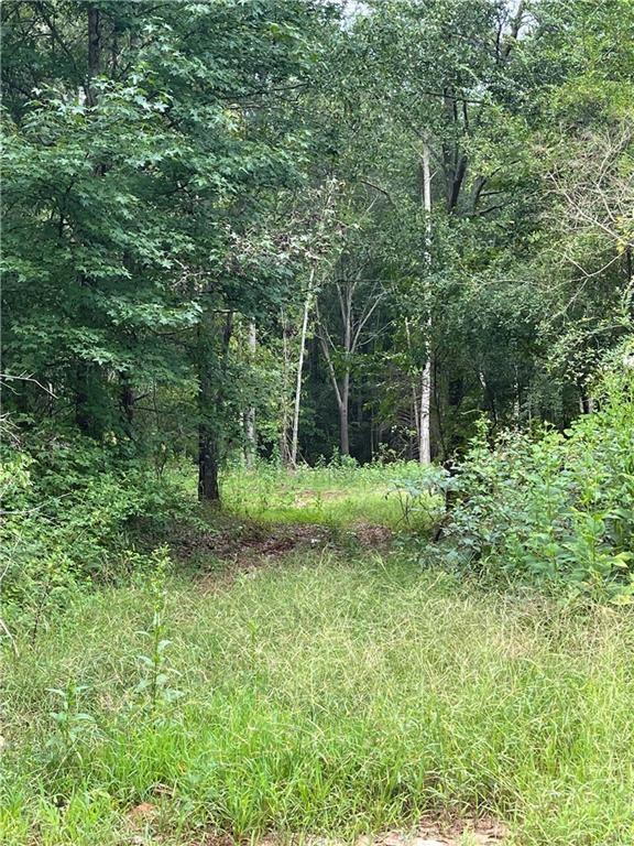 Photo of 828 Dixon Bridge Rd., Maysville, GA 30558 (MLS # 6960078)