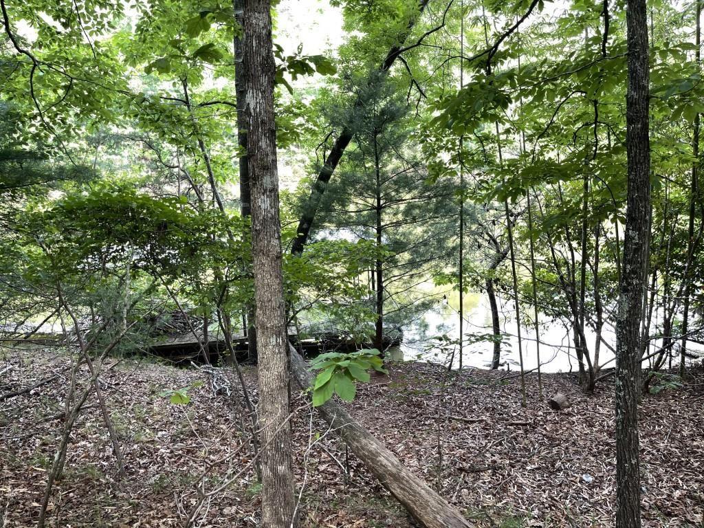 Photo of 4917 Fox Run Road, Gainesville, GA 30506 (MLS # 6898089)