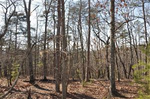 Photo of 7320 Skyline Drive, Big Canoe, GA 30143 (MLS # 6040106)