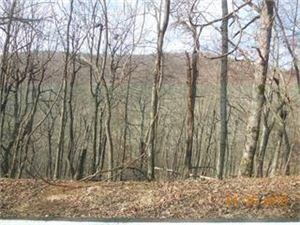 Photo of 1069 Deer Run Ridge, Big Canoe, GA 30143 (MLS # 6047122)