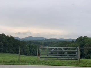 Photo of Lot 50 Gold Nugget Lane, Blairsville, GA 30512 (MLS # 6761170)