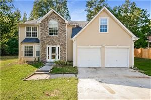 Photo of 10801 Misty Meadows Court, Hampton, GA 30228 (MLS # 6631333)