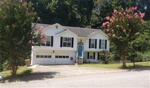 Photo of 5440 Bushnell Court, Flowery Branch, GA 30542 (MLS # 6604342)
