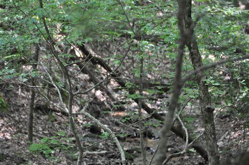 Photo of 2144 Crested Fern Lane, Big Canoe, GA 30143 (MLS # 6702439)