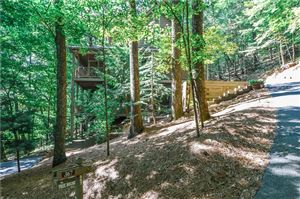 Photo of 367 Windflower Drive, Big Canoe, GA 30143 (MLS # 6522520)