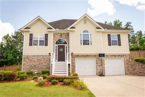 Photo of 62 Roundtree Court, Dallas, GA 30132 (MLS # 6619539)