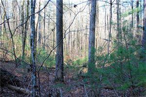 Photo of 0 Nimblewill Creek Road, Dahlonega, GA 30533 (MLS # 5984569)